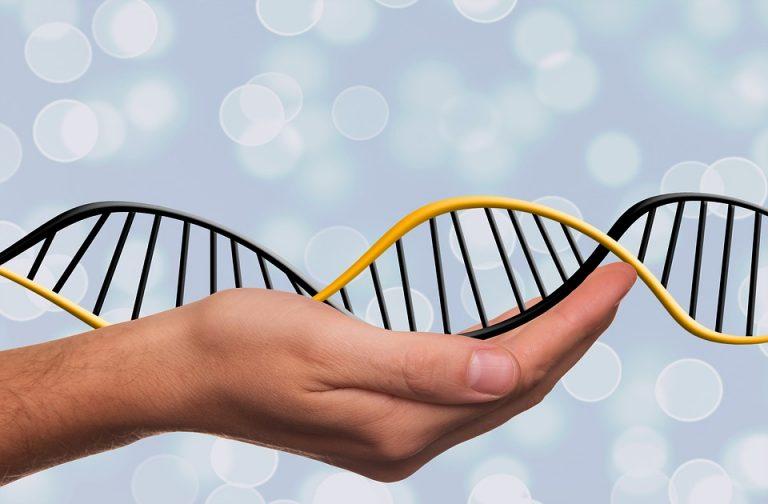 Les liens génétiques entre l'autisme, le TDAH et la schizophrénie